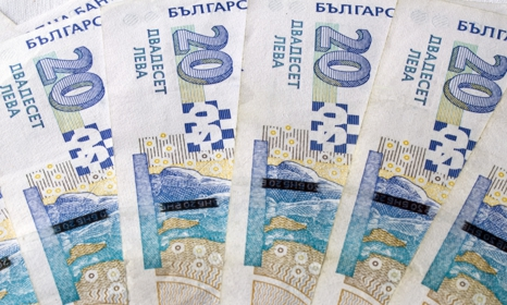 20 lulgarian leva banknotes